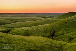 Review of 2013, My Year in Review and the Changing Kansas Landscape
