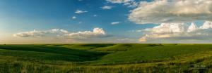 Early Spring in the Flint Hills